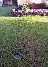 basement gutter downspouts lawn scape foundation