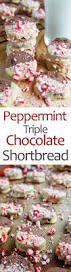 peppermint triple chocolate shortbread on closet cooking