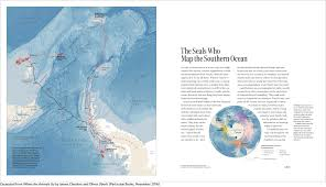 Map With Oceans The Seals Who Map The Southern Ocean Where The Animals Go
