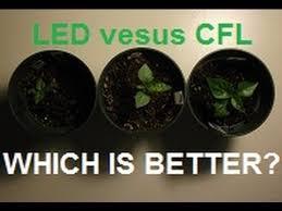 cfl grow lights for indoor plants download fluorescent bulbs for growing plants solidaria garden