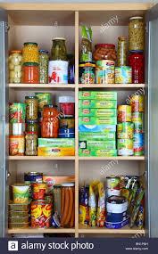 cabinet kitchen food cabinet food cabinet ekjvjjpg kitchen food