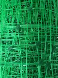 plant climbing mesh home design inspirations