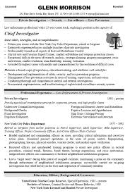 Summary Examples For Resume by Download Security Resume Sample Haadyaooverbayresort Com