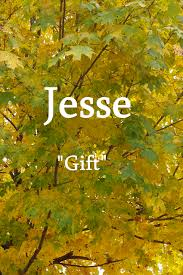 jesse a hebrew name meaning