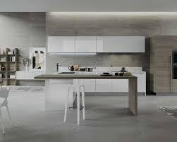 Modern Italian Kitchen Houzz - Modern italian interior design