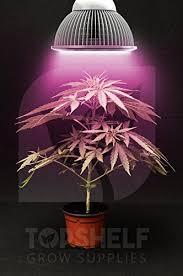 Grow Lights For Indoor Herb Garden - top shelf grows premium grow light led growing organic indoor