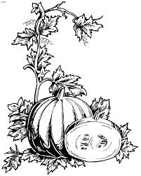 five little pumpkins template virtren com