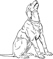 dog color pages printable dog dogs puppy animal coloring pages