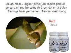 obat pembesar penis no 1 vimax kapsul herbal original canada vimax