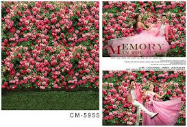 wedding vinyl backdrop 2017 5x7ft new photos pink roses wall for wedding