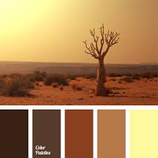 Luxury Color Palette Scorched Desert Colors Combined With Clay Shades Of The Grand