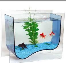 fish aquarium design ideas android apps on google play