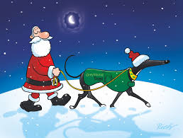 humorous christmas cards comedy christmas cards greyhound store