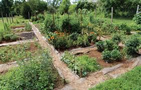 old trail community garden takes root crozet gazette