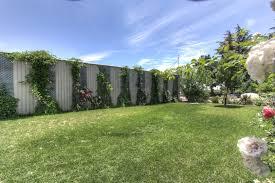 Backyard Vineyard Design by Wine Bar Watts Winery Lodi Ca