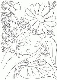 coloring pages bugs bug coloring pages printable printable