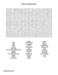 skin bone and muscles word search for middle science