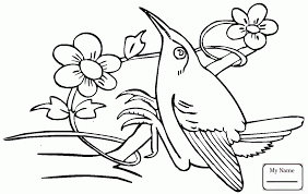 hummingbird spread wing birds coloring pages for kids coloring7 com