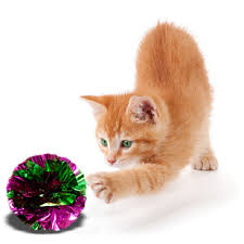 compare prices on mylar ball cat online shopping buy low price