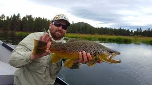 fly fishing central oregon rivers u2013 the hook fly shop home of