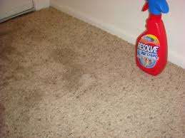 everyday rustic vinegar and baking soda tackle the carpet stains
