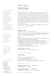 sales assistant resume customer sales assistant resume arieli me