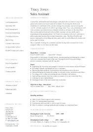 high resume sles pdf customer sales assistant resume sales assistant 2 resume templates
