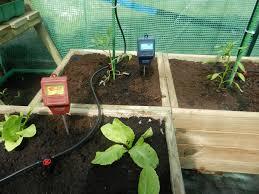 free images lawn produce backyard soil garden greenhouse