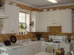 17 Top Kitchen Design Trends Kitchen Cute Retro Kitchen Ideas 12 17 Top Kitchen Design Trends