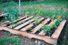 garden ideas using wooden pallets interior design