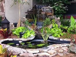 backyard 8 small backyard fish pond ideas front yard ponds