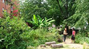 Urban Gardens Phoenix - urban garden mysteriously closes morning ag clips
