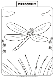download coloring pages dragonfly coloring dragonfly
