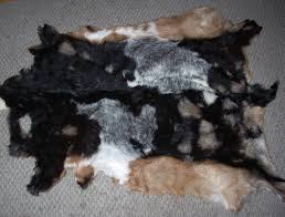 How Much Does A Bear Rug Cost Custom Hide Tanning
