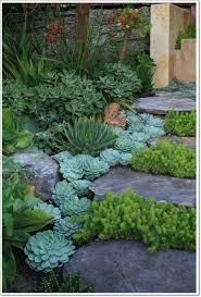 rock gardening archives idyllic gardens