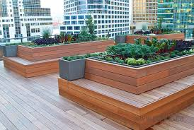 sustainability in high places price tags rooftop vegetable gardens