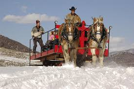 11 of the best sleigh rides and skating rinks around colorado