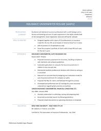 Medical Transcription Sample Sample Insurance Underwriter Resume Resume For Your Job Application
