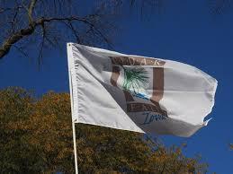 3 X 5 Flags 3 U0027x5 U0027 4 U0027x6 U0027 5 U0027x8 U0027 City Of Cedar Falls Flag U2013 Miller Flag