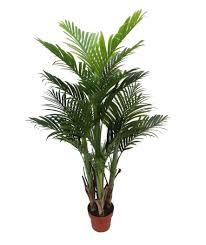medium real touch artificial areca palm tree from evergreen direct