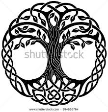vector ornament decorative celtic tree of celtic