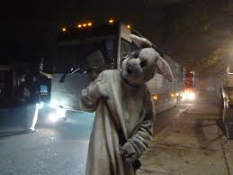 scarehouse bunny our team of artists managers and perfor u2026 flickr