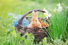 what u0027s in store for easter get our forecast farmers u0027 almanac