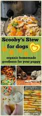 scooby u0027s organic stew for dogs happy and yummy