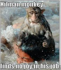 Funny Monkey Meme - funny monkey pictures with captions pakistan army photos pak army
