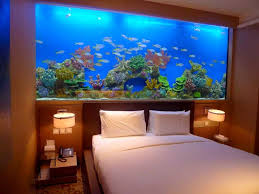 modern aquarium used for dividing the livingroom livinator