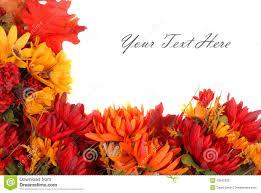 Autumn Flower Autumn Flowers Border Stock Photo Image 10545330