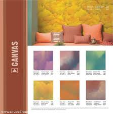 31 best colours images on pinterest asian paints colours and