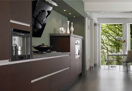 Kitchen Cabinets Veneer Lovely Intended Kitchen Home Design - Kitchen cabinet veneers