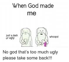 When God Made Me Meme - when god made me just a dash of ugly whoopsl no god that s too much